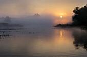 Sunrise in the Danube River, Lower Austria, Austria