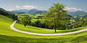 Upper Austrian Alpine foothills near Maria Neustift, Upper Austria, Austria