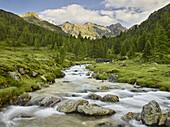 Debantbach, Debanttal, National Park Hohe Tauern, East Tyrol, Tyrol, Austria