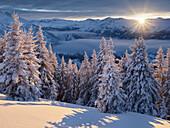 Blick in die Hohen Tauern vom Kreuzkogel, Dorfgastein, Gasteinertal, Pongau, Salzburg, Österreich