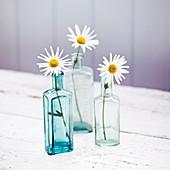 Wild Daises in antiken Glasflaschen