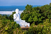 Giant Seated Buddha at Mihintale Monastery, Anuradhapura District, North Central Province, Sri Lanka, Asia.