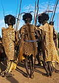 Ethiopia, Omo Valley, Omorate, dassanech men with leopard skins and ostrich feathers headwears during dimi ceremony to celebrate circumcision of teenagers.