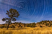 Circumpolar star trails over the moonlit Mimbres Valley near Lake Roberts in the Gila National Forest, in southern New Mexico. Illumination is from the waxing gibbous Moon. Polaris is at upper left, while the stars of the Big Dipper are rising at right, w