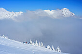 Two persons backcountry skiing in front of fog, Scheinbergspitze, Ammergau Alps, Upper Bavaria, Bavaria, Germany