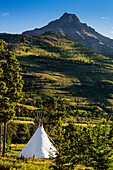 'Large white canvas teepee in a treed field with green hillside and mountain peak in the background; Waterton, Alberta, Canada'