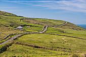 Irish coastal scenery along Skellig Ring, Co, Kerry, Munster, Ireland, Europe