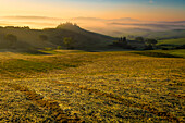 Orcia Valley, Siena district, Tuscany, Italy, Europe, Warm sunset over belvedere farmhouse