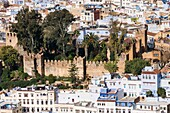 Morocco, Chauen, Chefchauen, Alcazaba, Aerial view of Kasbah on sunny day