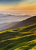 Ligurian Apennines, Piedmont, Italy, The sunset lights up the hillside of Mount Ebro