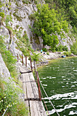 Miesweg, hiking trail along Lake Traunsee, Upper Austria, Austria, Europe