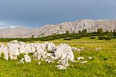 Huttererhoess, Schroecken, Warscheneckgruppe, Totes Gebirge, Hinterstoder, Upper Austria, Austria, Europe