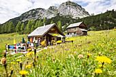 ' Alpine hut ''Wia dahoam Huettn'', Leistalm, Totes Gebirge, Styria, Austria, Europe'