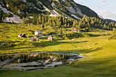 Tauplitzalm and Lake Tauplitzsee, Totes Gebirge, Styria, Austria, Europe