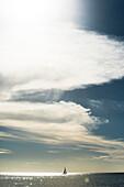 Ein Segelboot bei Sonnenschein auf dem Golf von Mexiko, Fort Myers Beach, Florida, USA