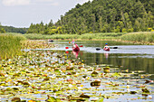 Granzower Möschen, canoe tour, holiday, summer, swimming, sport, red boats, family, water lily, Mecklenburg lakes, Mecklenburg lake district, Granzow, Mecklenburg-West Pomerania, Germany, Europe