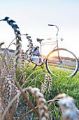landscape, fields near Klein Thurow, bicycle tour, rest, Biosphere Reserve Schaalsee, Mecklenburg lake district, Klein Thurow, Mecklenburg-West Pomerania, Germany, Europe