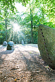 Prehistoric place of worship and funeral, Boitiner Steintanz, Stone Dance of Boitin, Mecklenburg lakes, Sternberg, Mecklenburg-West Pomerania, Germany, Europe