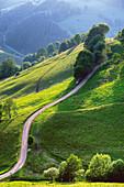 landscape, Münstertal, Black Forest, Germany
