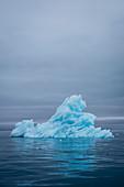 Small iceberg at glacier Bråsvellbreen Nordauslandet, Spitzbergen, Svalbard