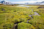 Small creek on island Gnalodden, Spitzbergen, Svalbard