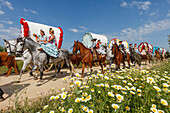 blooming meadow in Spring, horse riders and caravan of ox carts, El Rocio, pilgrimage, Pentecost festivity, Huelva province, Sevilla province, Andalucia, Spain, Europe