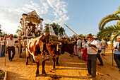 Simpecado cart at a country estate, El Rocio pilgrimage, Pentecost festivity, Huelva province, Sevilla province, Andalucia, Spain, Europe