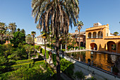 Estanque de Mercurio, water basin, palm trees in the Jardines del Real Alcazar, royal palace, UNESCO World Heritage, Sevilla, Andalucia, Spain, Europe