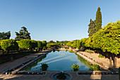 Wasserbecken und Zypresse, Gärten des Alcazar de los Reyes Cristianos, königliche Residenz, historisches Stadtzentrum von Cordoba, UNESCO Welterbe, Cordoba, Andalusien, Spanien, Europa