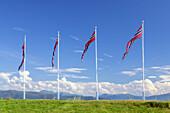 Norwegian flags in the wind, Bud near the Atlantic Ocean Road, More og Romsdal, Western Norway, Norway, Scandinavia, Northern Europe, Europe