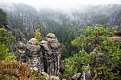Rock formation Bastei, Saxon Switzerland National Park, Elbe Sandstone Mountains, Saxony, Germany, Europe