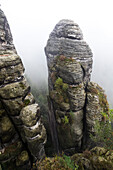 Rock needle in mist, rock formation Bastei, Saxon Switzerland National Park, Elbe Sandstone Mountains, Rathen, Saxony, Germany, Europe
