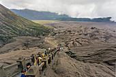 Tourists Travel To Mount Bromo, East Java, Indonesia