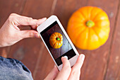 Person Taking Picture Of Pumpkin In Smartphone