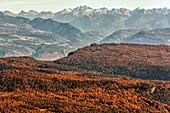 Italy, Trentino Alto Adige, Penegal Mount view from Luco peak