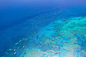 Great Barrier Reef from above, Queensland, Australia, Heart reef