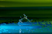 A macro still life of the shape that it assumes a drop of water after impact with a surface