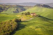 Asciano countryside, Crete senesi, Tuscany, Italy