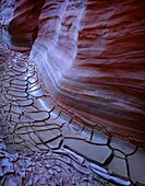 USA, Arizona-Utah border, Vermilion Cliffs National Monument, Sandstone displays details from erosion above dried, cracked mud in Buckskin Gulch