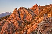 Rote Felsen in der Abendsonne in der Calanche, zwischen Porto und Piana, Westkorsika, Korsika, Südfrankreich, Frankreich, Südeuropa, Europa