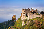 Schauenburg castle ruin, early morning fog, Oberkirch, Black Forest, Baden Wurttemberg, Germany, Europe