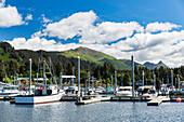 Kleine Boote angedockt im Seldovia Hafen an einem hellen sonnigen Tag, Seldovia, Südalaska, USA, Sommer