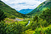 Die Johnson Pass Trail im Sommer, South Central Alaska, USA