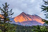 Sunset lights up a hillside of the Kenai Mountains near Moose Pass, Southcentral Alaska, USA