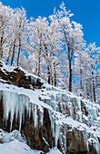 'Snow covered trees and ice on rocks against a blue sky; Shefford, Quebec, Canada'