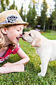 'A smiling young girl wearing a sundress and hat has her nose licked by a young Labrador puppy; Anchorage, Alaska, United States of America'