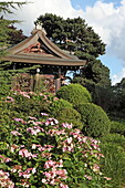Japanischer Chokushi-Mon Tempel, Royal Botanic Gardens, Kew, Richmond upon Thames, London, England