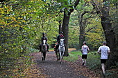 Rider and Jogger, Epping Forest, Epping, London, England