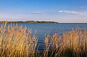 View over Hagensche Wiek to Moenchgut peninsula, Ruegen,  Baltic Sea, Mecklenburg-West Pomerania, Germany