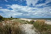 Ostseeküste bei Kühlungsborn, Mecklenburg Vorpommern, Deutschland